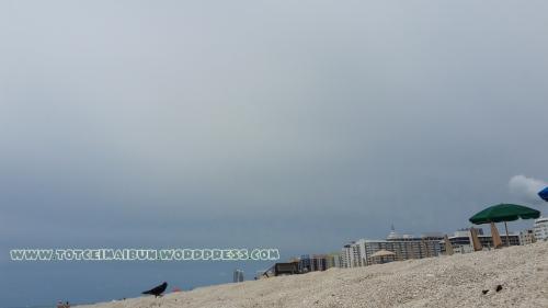 zi inorata Miami